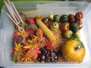 Senzorična škatla - jesen