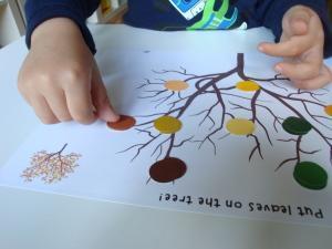 Prepoznavanje barvnih odtenkov skozi jesensko dejavnost