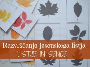 Razvrščanje jesenskega listja - listje in sence
