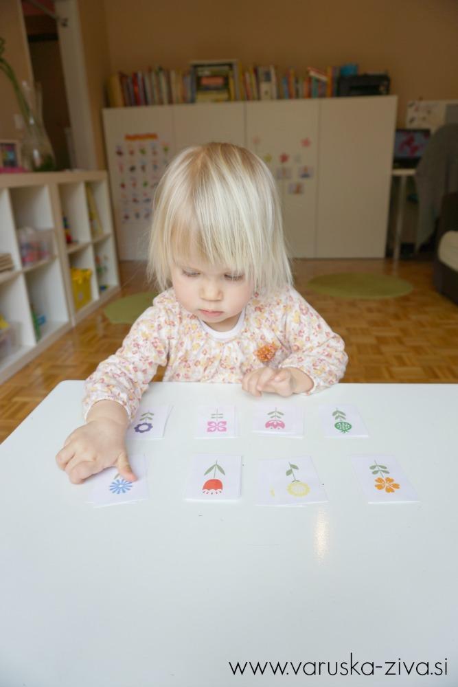 Prirejanje rožic po barvah - Matematika za malčke