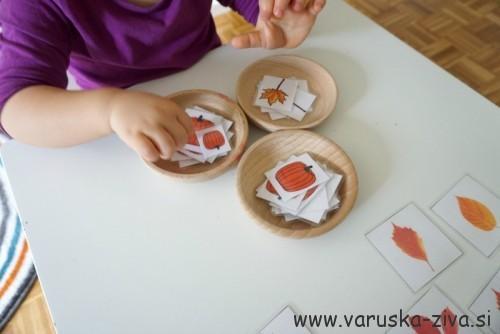 Razvrščanje buč in listkov - matematika za malčke