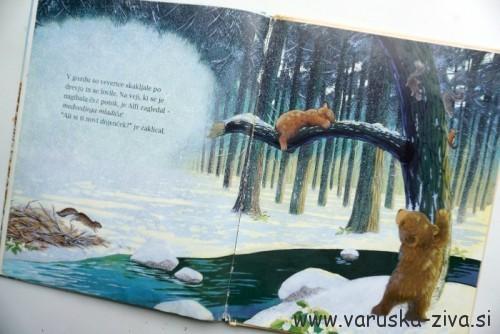 Knjiga tedna: Medvedji dojenček - založba Učila
