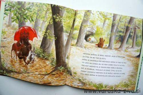 Knjiga tedna: Pod medvedovim dežnikom, Svetlana Makarovič