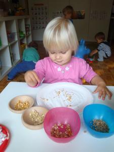 Kolaž - slike iz žit
