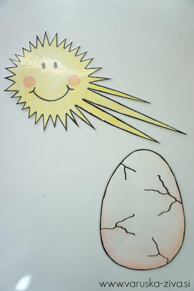 Piščanček pik - Sonček poboža jajčno lupinico