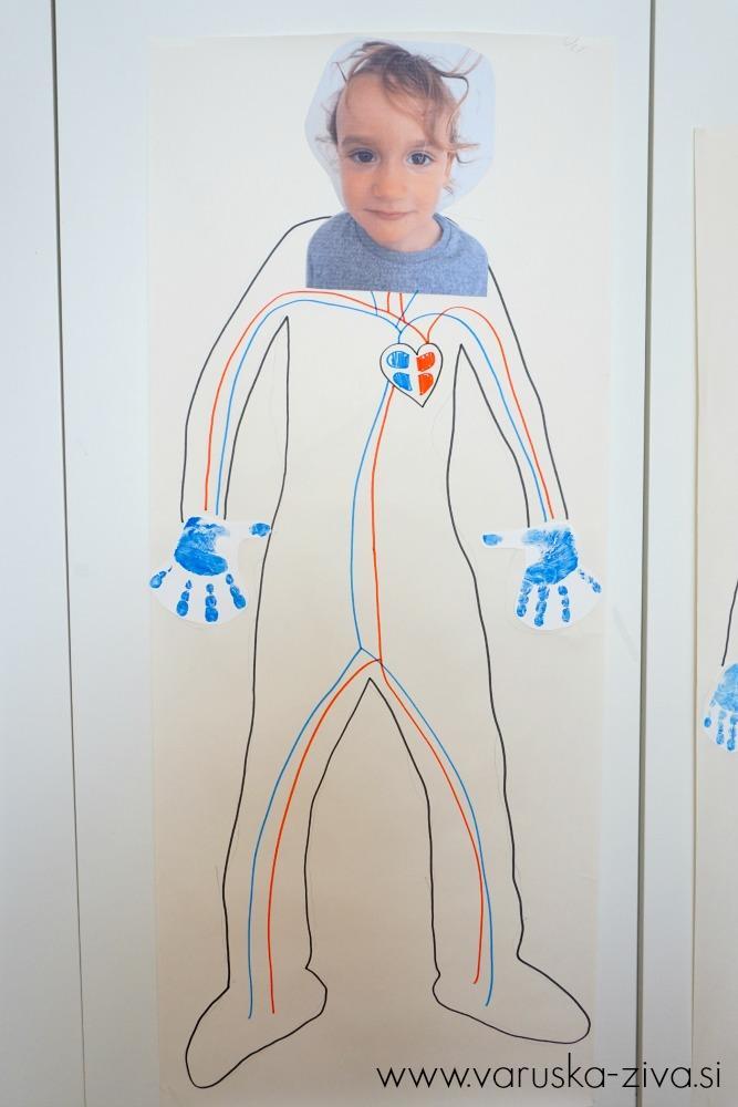 Moje telo: Kaj teče po žilah