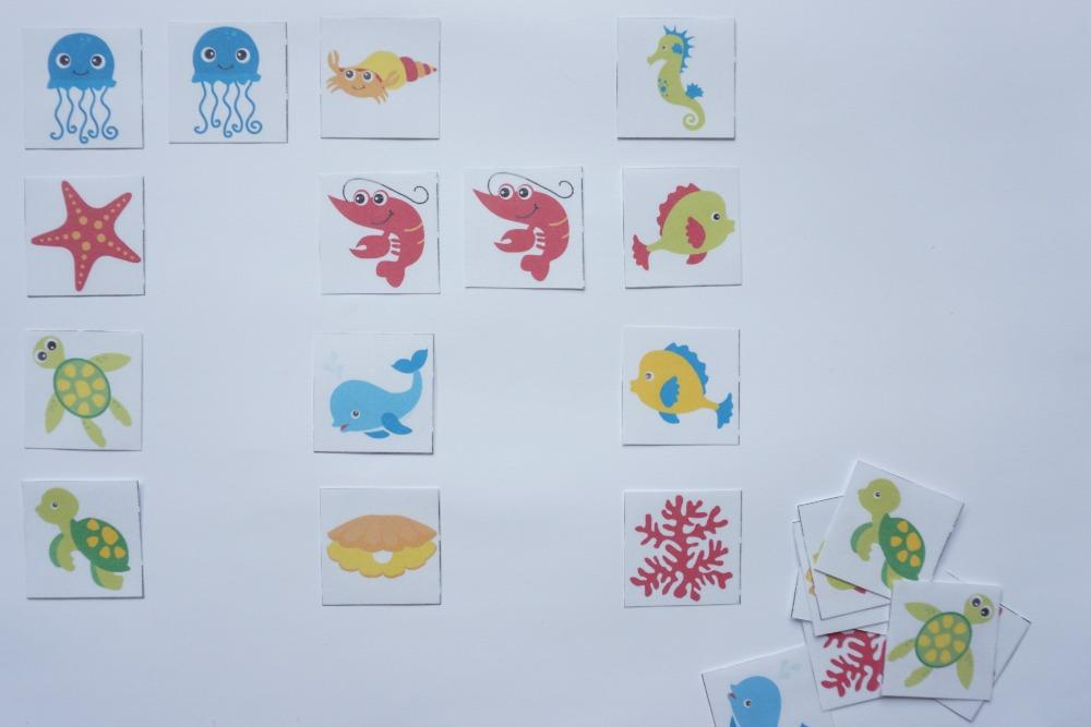 Razvrščanje morskih živali