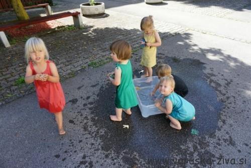 Igra z vodo - morske živali
