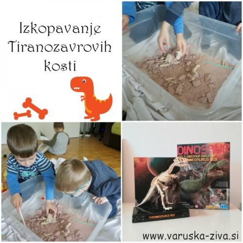 Izkopavanje kosti dinozavrov - Mali Paleontologi