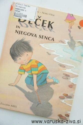Knjiga tedna: Deček in njegova senca