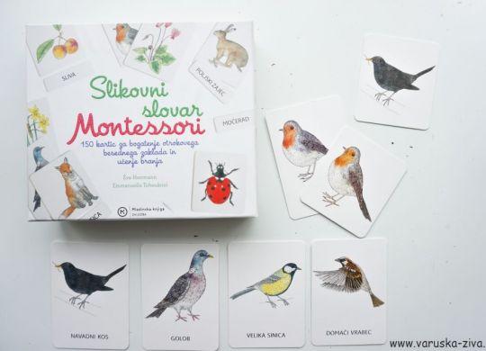 Spoznavanje in prirejanje sličic ptic - Slikovni slovar Montessori