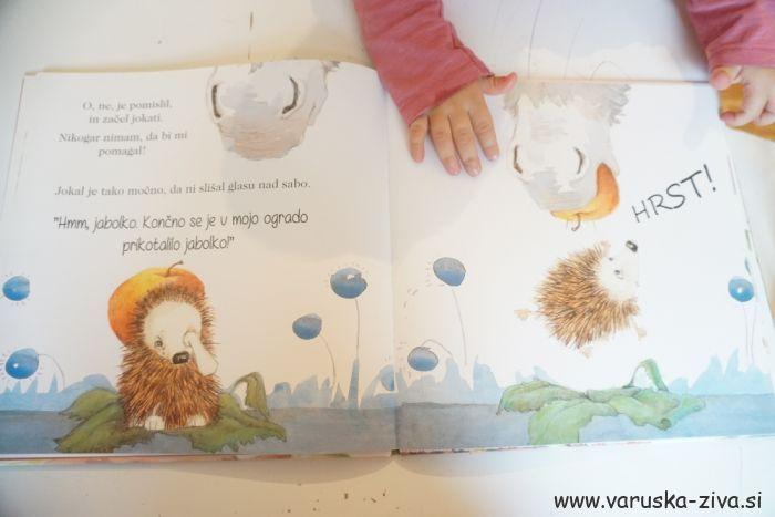 Knjiga tedna - Kako je ježek našel prijatelja
