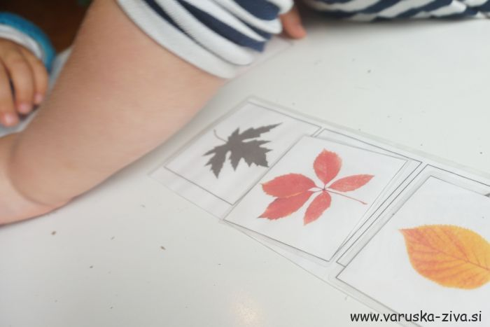 Prirejanje jesenskih listov