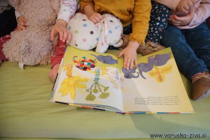 Knjiga tedna: Elmer