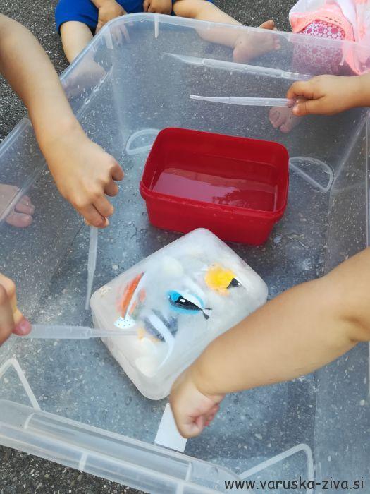 Poletna igra z ledom - poletne aktivnosti za otroke
