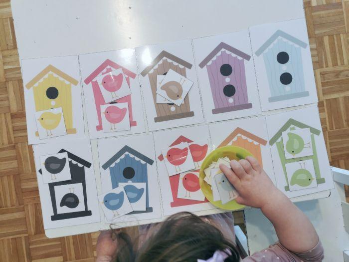 Razvrščanje ptičkov po hišicah