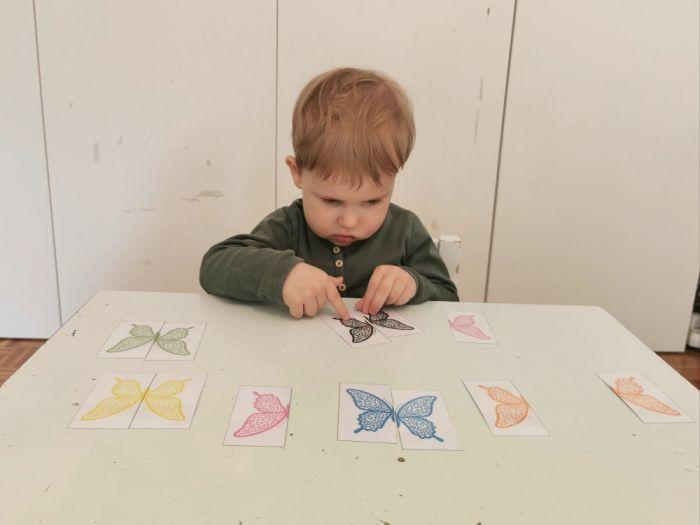 Barvni metulji - iskanje polovic