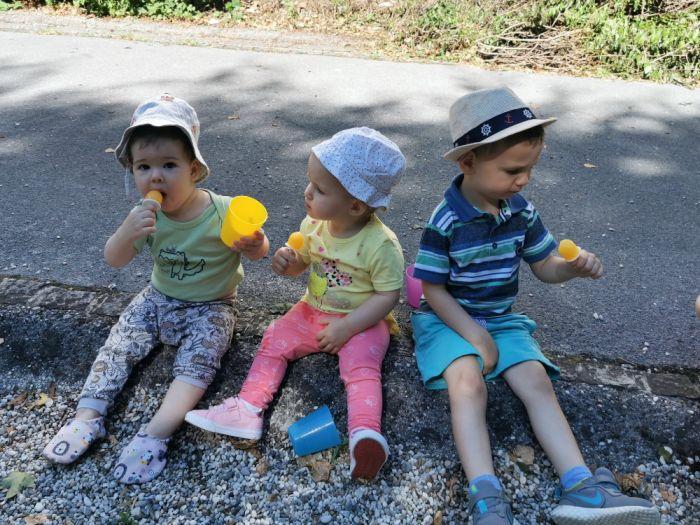 Domači sladoled